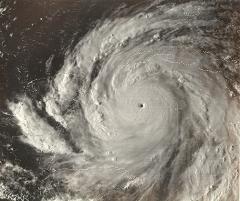 cyclonegilbert.jpg